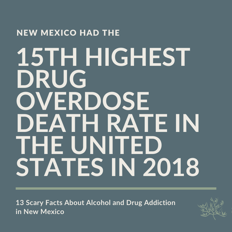 15th Highest Drug Overdose Death Rate in the United States